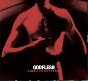 CD   Godflesh -A World Lit Only by Fire