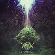 CDdigi  VIRVUM- Illuminance
