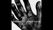 CD EDITORS - BLACK GOLD : BEST OF EDITORS