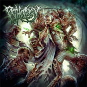 CD Pathology-Pathology