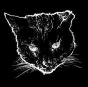 CDdigi CRIPPLED BLACK PHOENIX - HORRIFIC HONORIFICS